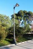 Klassisk järnlyktstolpe av en ljus kula som omges av vegetation royaltyfri bild