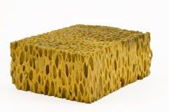 klassisk naturlig svamp Arkivfoton