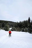 Klassisk nordisk skidåkning i berg Fotografering för Bildbyråer