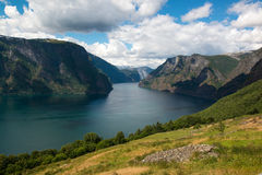 Klassisk panoramautsikt till fjorden från synvinkel på den nationella turist- rutten Aurlandsfjellet, Norge Royaltyfri Fotografi
