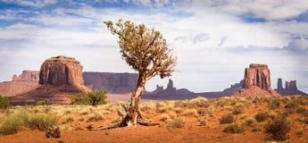 Klassisk sikt av amerikanskt västra i monumentdalen Arkivfoton