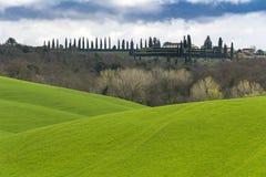 Klassisk sikt av rullningsgräsplanfält i Tuscany Arkivbild