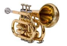 Klassisk vindmusikinstrumentkornett som isoleras på vit bakgrund Royaltyfri Foto