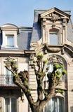 Klassiska fönster av en lyxig byggnadsfasad i Paris, Frankrike Arkivbild