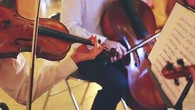 Klassiska musiker stock video