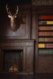 Klassiskt arkivrum i victorianstilen royaltyfri foto