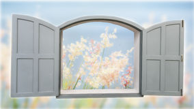 Klassiskt grått fönster med suddighetsgräsblomman fotografering för bildbyråer