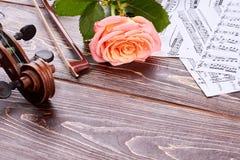 Klassiskt instrument på träbakgrund royaltyfri bild
