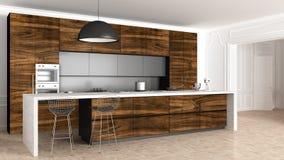 Klassiskt kök i tappningrum med stöpningsväggen, lyxig inre royaltyfria foton