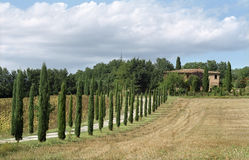 klassiskt lantbrukarhem tuscan Arkivfoton