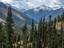 Klassiskt Rocky Mountain landskap Royaltyfri Foto