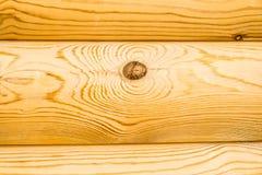 Klassiskt trä royaltyfri fotografi