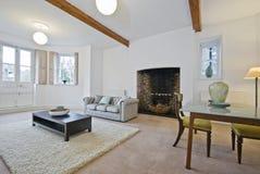 klasyczna mieszkania podłoga ziemia Obraz Stock