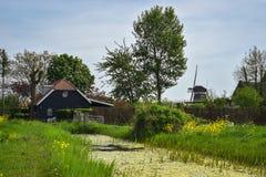 Klasyczna scena z kanałem, gospodarstwem rolnym i wiatraczkiem w holenderskiej wsi w wiośnie, obrazy stock