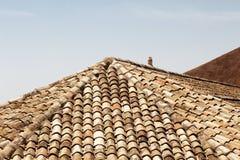 Klasyczne płytki dachy noto, Sicily obrazy royalty free