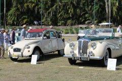 klasyczne samochody Obraz Royalty Free