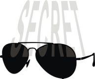 klasyczni okulary przeciwsłoneczne Obraz Royalty Free