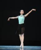 Klasyczny balet: Walc kwiaty Zdjęcia Stock