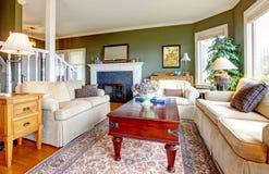 Klasyczny elegancki zielony żywy pokój Fotografia Stock