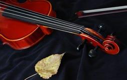 klasyczny instrumentu sznurka skrzypce Zdjęcie Stock