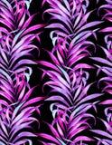 Klasyczny palma wzór Fotografia Royalty Free
