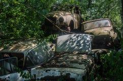 klasyczny samochód z cieniami drzewa zdjęcie royalty free