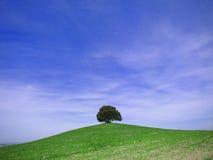 Toskański wzgórze Fotografia Royalty Free