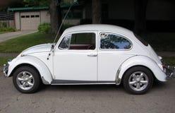Klasyczny Volkswagen Beetle Zdjęcia Royalty Free