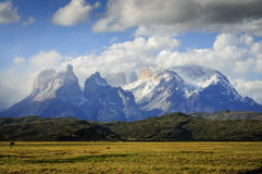 Klasyczny widok Góruje w Torres Del Paine parku narodowym, Pa Fotografia Royalty Free