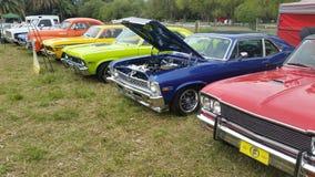 Klasyków klejnoty! Mięśni samochody! Yahoooo! zdjęcie royalty free