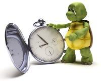 klasyka kieszeniowy tortoise zegarek ilustracja wektor