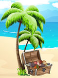 Klatka piersiowa z seashells na tropikalnej plaży royalty ilustracja