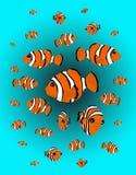 klaunie ryby ilustracja wektor