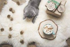 klaus santa för frost för påsekortjul sky Kopp kaffe brittisk katt, handgjorda gåvor home rest Top beskådar kopiera avstånd Matte arkivfoto