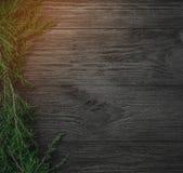klaus santa för frost för påsekortjul sky Svart träbakgrund med gran förgrena sig i en sida, bästa sikt Xmas-fyrkantkort Ljus eff royaltyfri foto