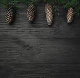 klaus santa för frost för påsekortjul sky Svart wood bakgrund, med granfilialer och bästa kottar, bästa sikt Xmas-fyrkantkort arkivbilder