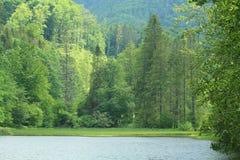 Klauzy - Natonal park Slovak Paradise, Slovakia. Klauzy - Natonal park Slovak Paradise in Slovakia royalty free stock photo