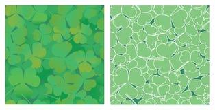 klaver bladeren Stock Afbeelding