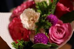 Klaver en rozen royalty-vrije stock foto's