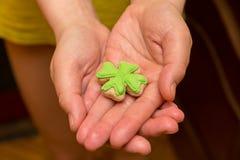 Klaver kruidige scherpe smaak op de palm van het handsymbool van St Patrick ` s Dag Royalty-vrije Stock Fotografie