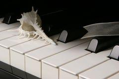 Klavier-Tasten. Stockbild