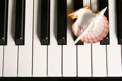 Klavier-Tasten. Stockbilder