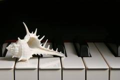 Klavier-Tasten. Lizenzfreie Stockbilder