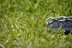 Klawiatura przykuwająca na trawie Zdjęcia Royalty Free