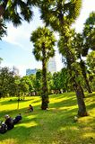 KLCC City Park. In sunny day near Petronas twin towers,   Kuala Lumpur Malaysia Royalty Free Stock Images