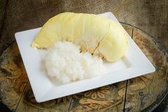 Klebriger Reis des Durian Lizenzfreies Stockfoto