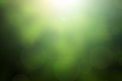 Kleeblatt im Blendenfleck für Valentinsgrußhintergrund Stockbild