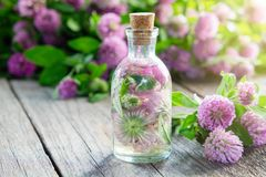 Kleetinktur oder Infusion und Kleeblumen stockfotos