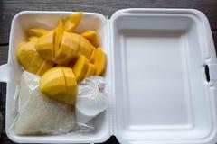 Kleiści ryż i mangowy przekąski pudełko Zdjęcie Royalty Free
