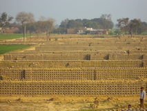 Kleibakstenen die droog bij een Steenoven worden Royalty-vrije Stock Foto